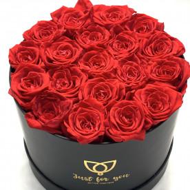 19 Rosas eternas Rojas en caja bombonera de color negra. Rosas de tacto natural y primera calidad.